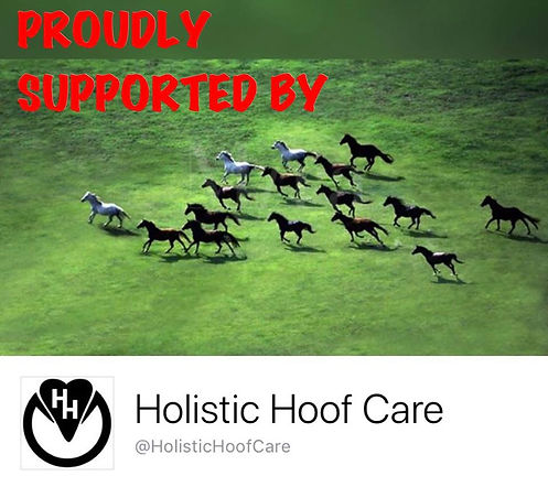 Holistc Hoof Care