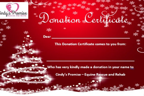 Red Christmas Donation Certificate