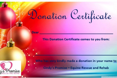 Christmas Bauble Donation Certificate