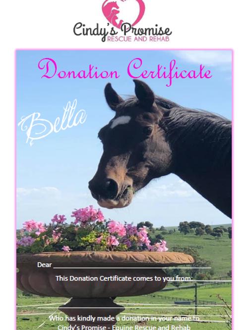 Donation Certificate