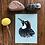 Thumbnail: Acorn Woodpecker
