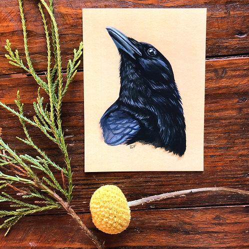 Crow   Tiny Art Print