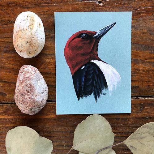 Red-Headed Woodpecker | Tiny Art Print