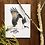 Thumbnail: Birds of the Rivers and Forests Notecard Pack