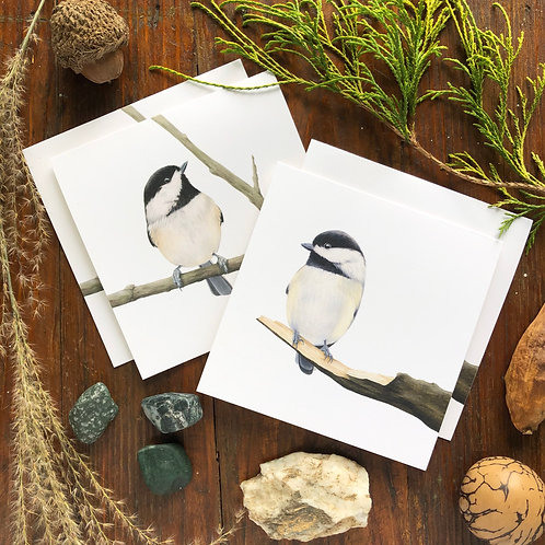 Carolina Chickadee Notecard 4 Pack