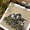 Thumbnail: Baby Robins in the Nest | Art Print
