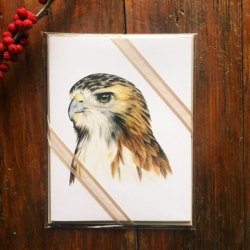 Red-tailed Hawk Notecard 3 Pack