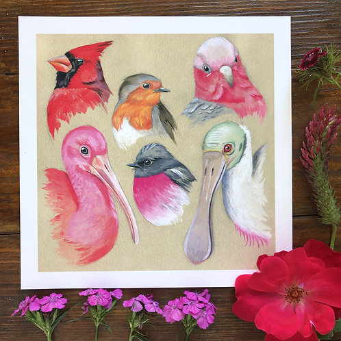Studies in Pink   Art Print