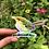 Thumbnail: Holographic Carolina Wren Sticker