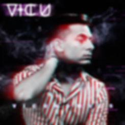 VICU VICUNOMICS 9.jpg