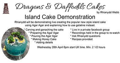 island cake demonstration copy.jpg