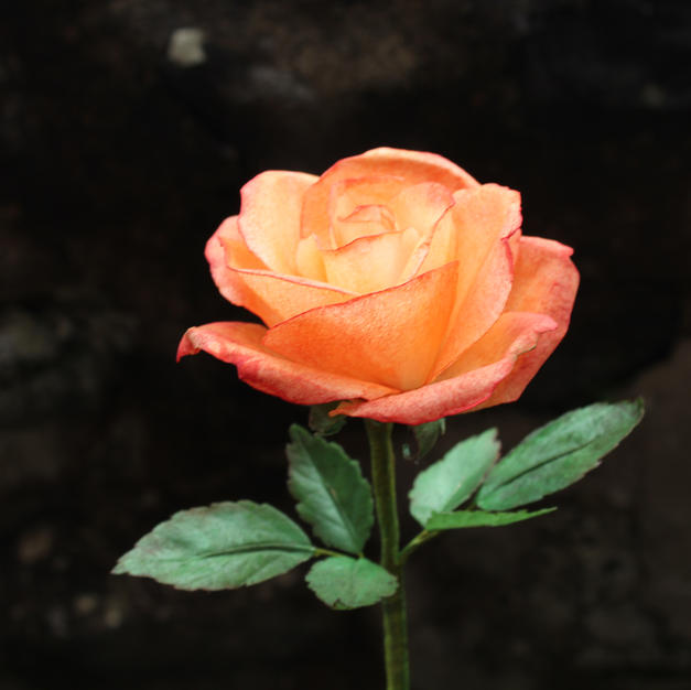 Orange Wafer paper rose