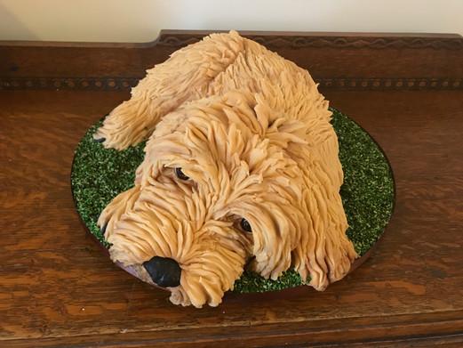 Family Dog £250