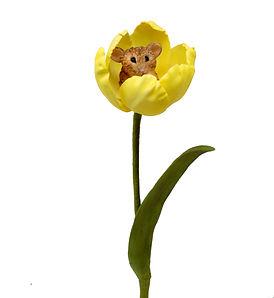 Rhianydd Webb Mouse in Tulip.jpg