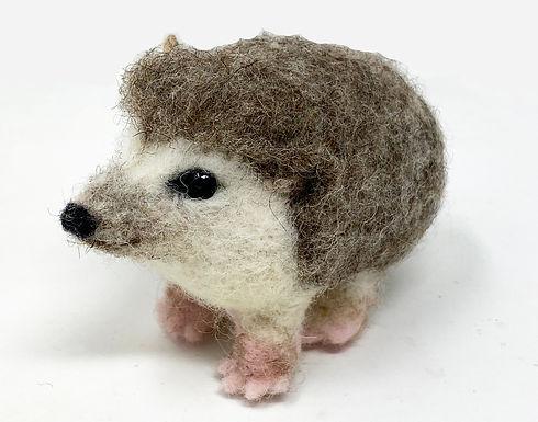 hedgehog cropped.jpg