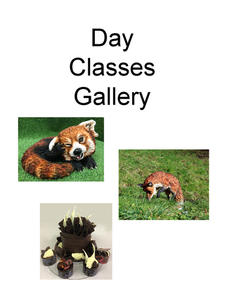 Day Classes Gallery