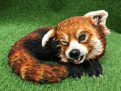 Pabu the red panda class by Dragons and Daffodil sCakes