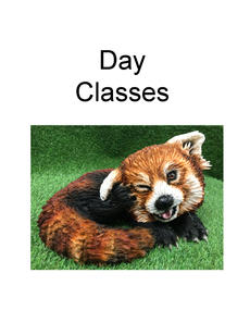 Day Classes