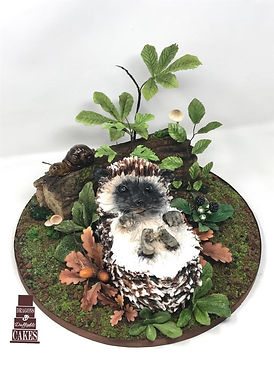 hedgehog and log sculpted cakes.jpg