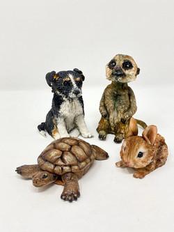 Animal Modelling