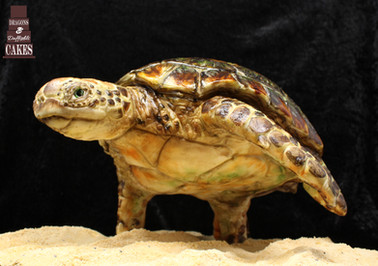 Gravity defying turtle £450