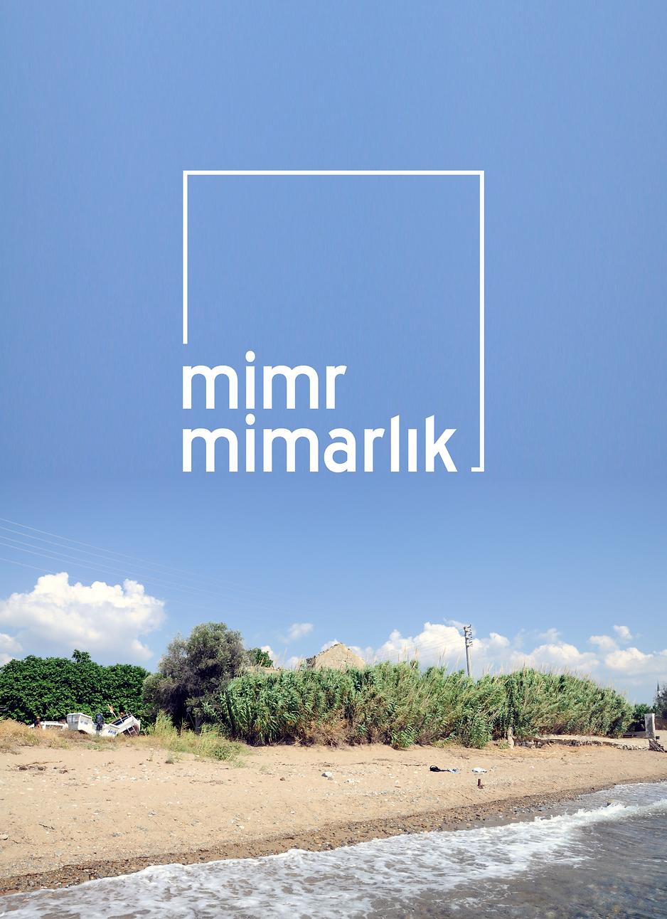 MimR_Li19_0708.png