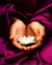 pic-sabrina-santa-clara-lotus-hand-offer