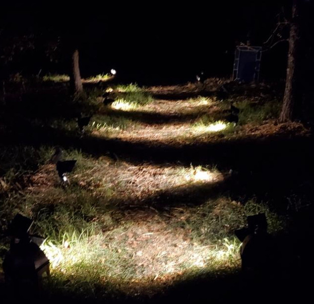 Full moon path