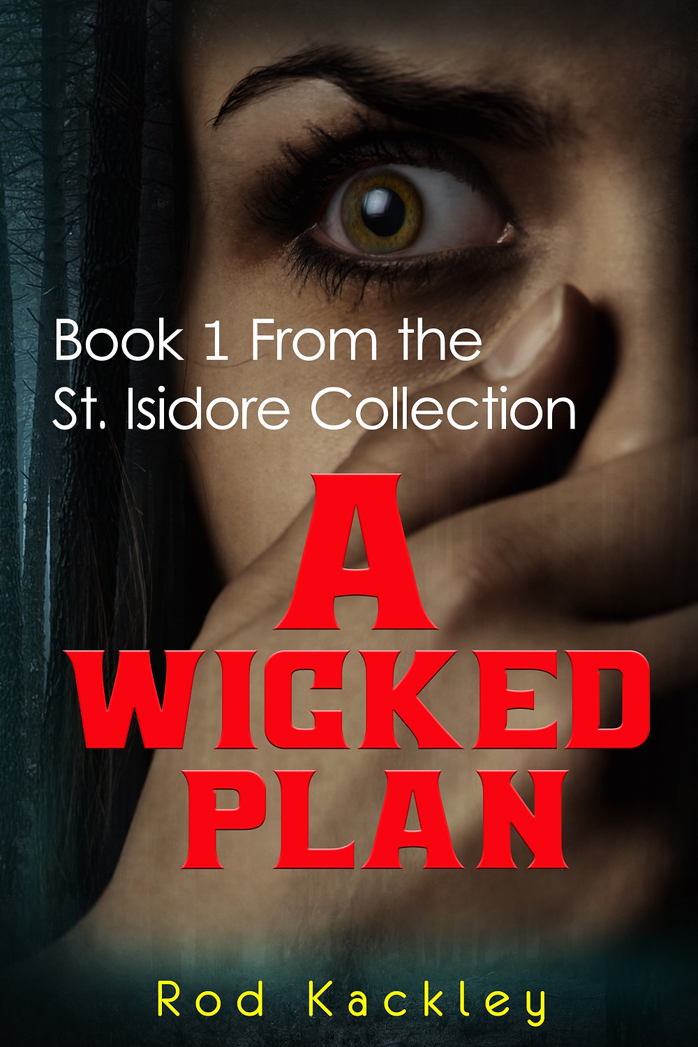 A Wicked Plan by Rod Kackley