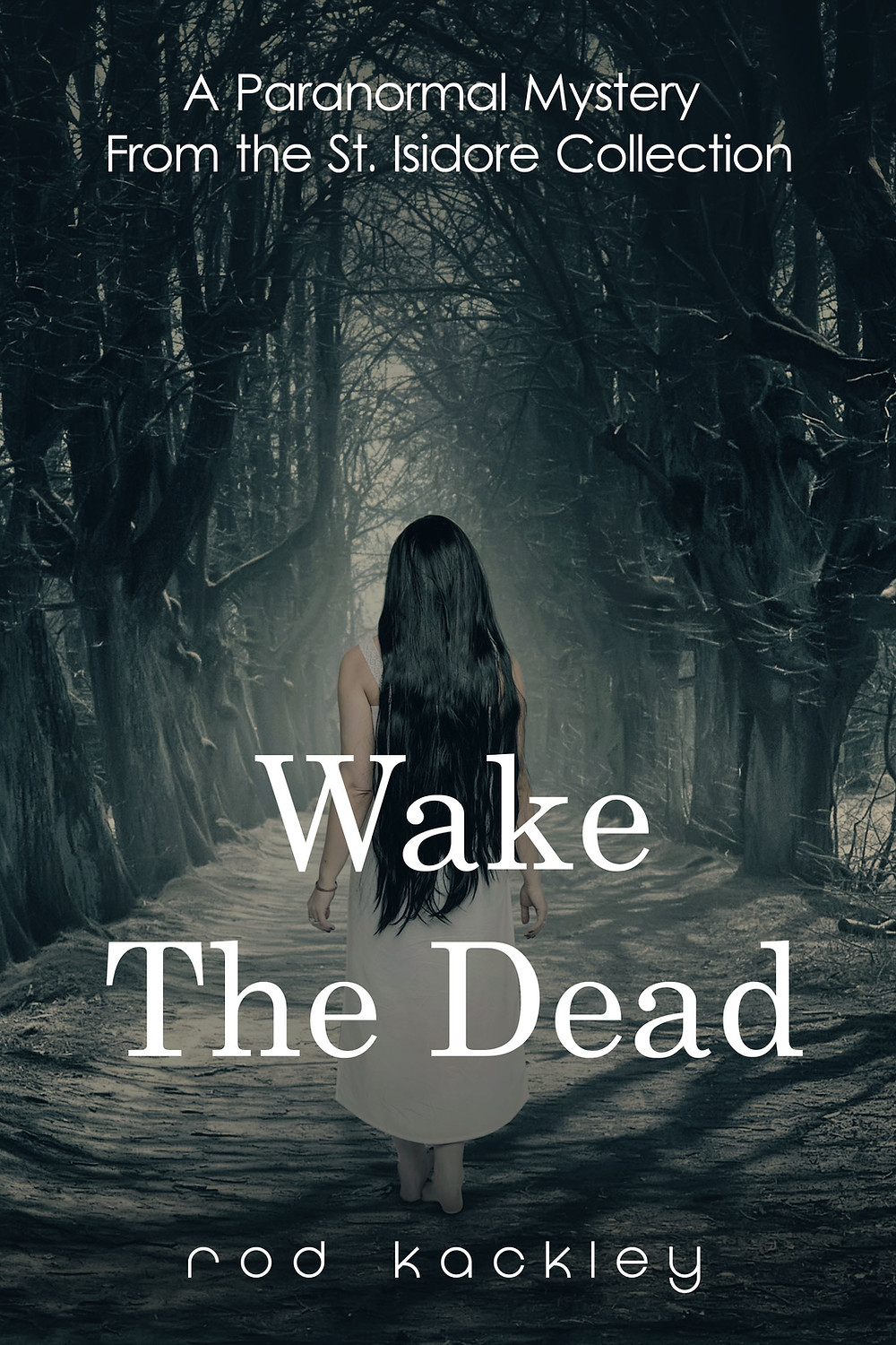 Wake The Dead: A Paranormal Mystery From the St. Isidore Collection