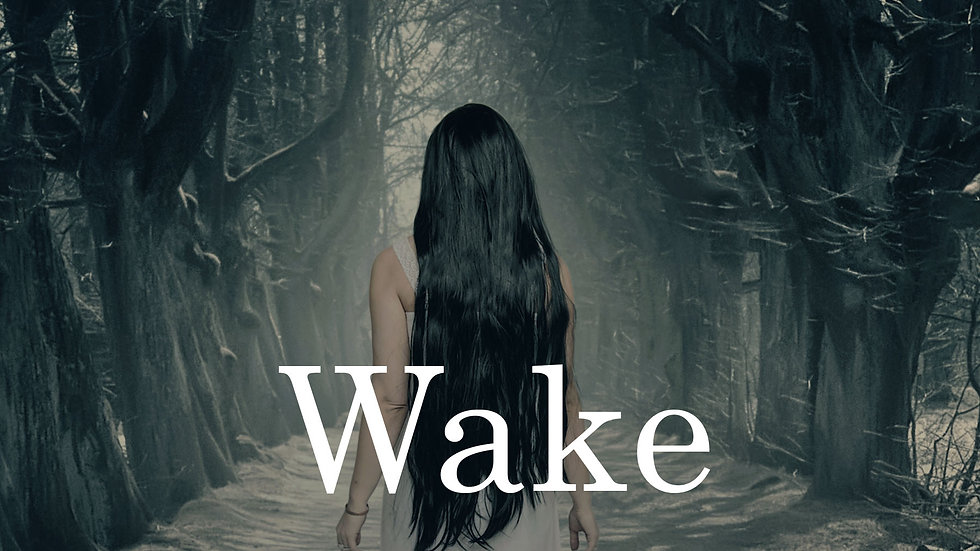 Wake The Dead: A Paranormal Mystery