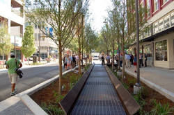 DOWNTOWN WATERSHED