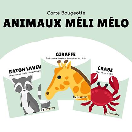 Carte Bougeotte ANIMAUX MÉLI MÉLO