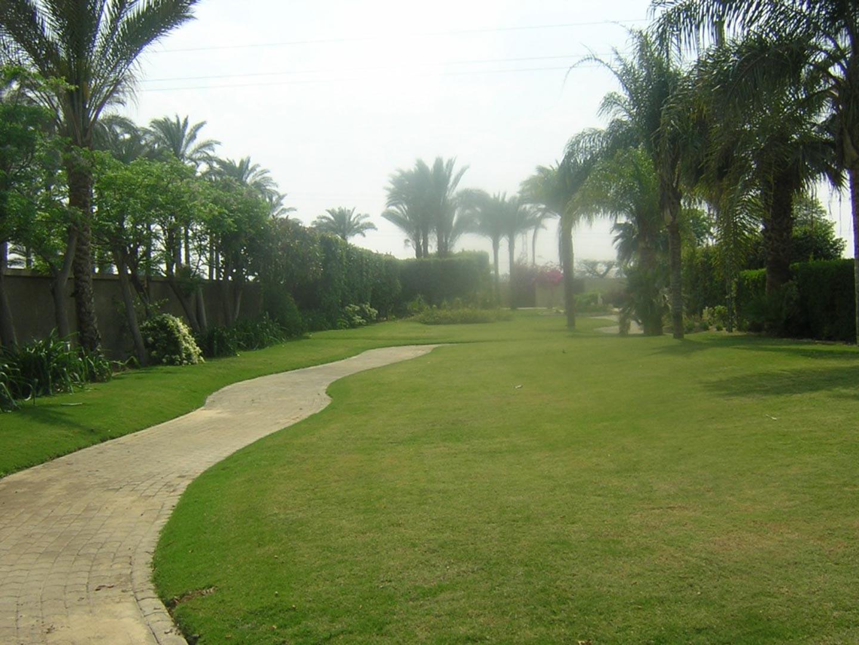 Raoucha Kandahar- Sakkara Villas - 360 Solutions (3).jpg