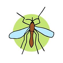 moquito-28.png