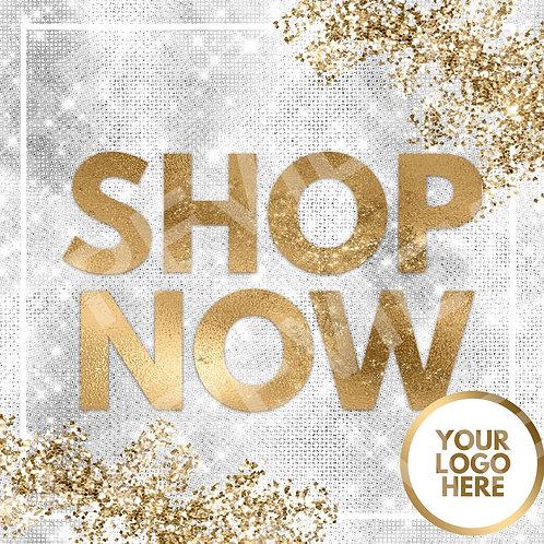 Shop Now PreMade Flyer - Silver