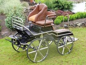 MHP3 Marathon horse pairs carriage