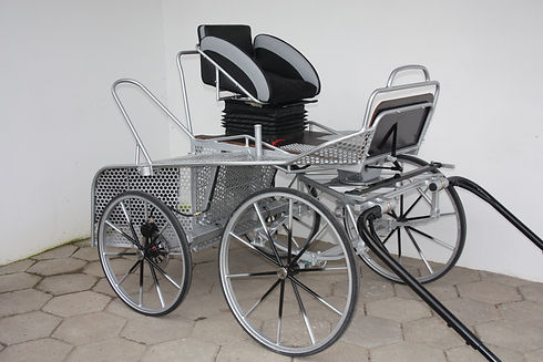Compact Extreme carriage.jpg