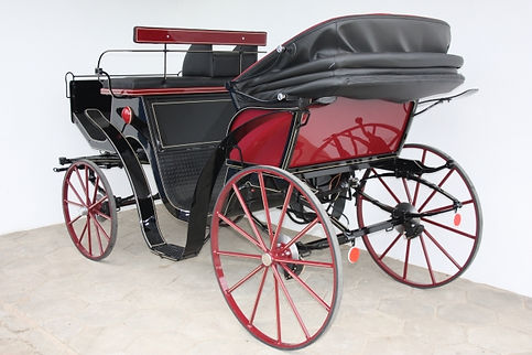Victoria carriage rear.jpg