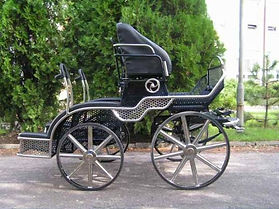 Pairs Horse Dressage, Cones and Marathon Combination Carriage HP2