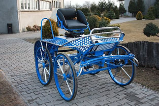 Single Horse Dressage, Cones and Marathon Combined Carriage H1