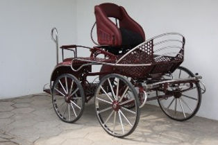MSH2 marathon single pony carriage