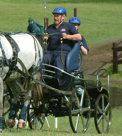 Competition carriage with horse and drivers.jpg