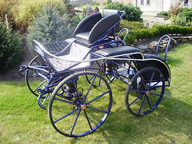 Single Horse Dressage, Cones and Marathon Combination Carriage H6
