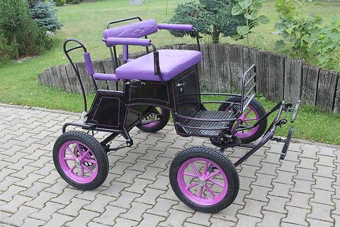 Shetland mini carriage.jpg