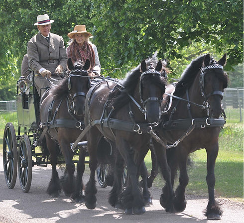 Prince Philip driving carriage.jpg