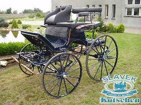 Horse Dressage Carriage H1