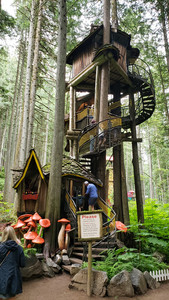 Whimsical treehouse at the Enchanted forest, B.C.