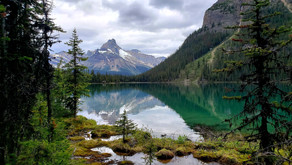 Camping in YOHO NATIONAL PARK with KIDS