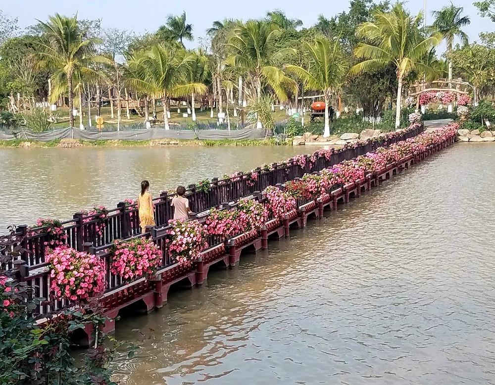 Bridge over the lake, at Hanoi Ecopark